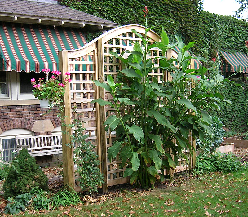 Arched square lattice wood vine trellis by Elyria Fence