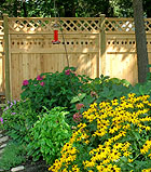 privacy fence with diagonal lattice