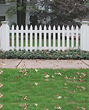 spaced white cedar wooden picket fence by elyria fence