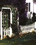 white cedar wooden picket fence and arbor by elyria fence