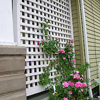wood pergola with square lattice vine trellis by elyria fence